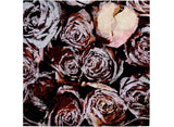 Wine and Roses Rug