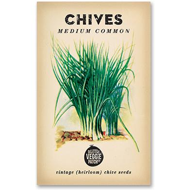 Little Veggie Patch - Chives 'Medium Common' Heirloom Seeds