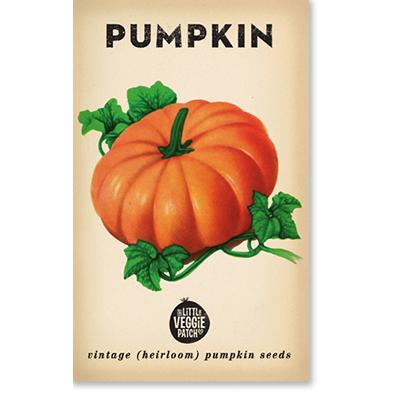 Little Veggie Patch - Pumpkin 'Small Sugar' Heirloom Seeds
