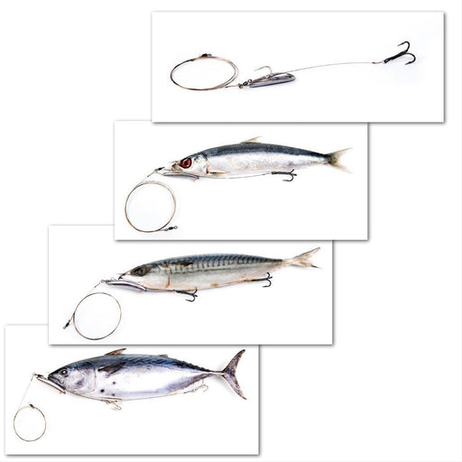 Banana Chin Weight Trolling Rig