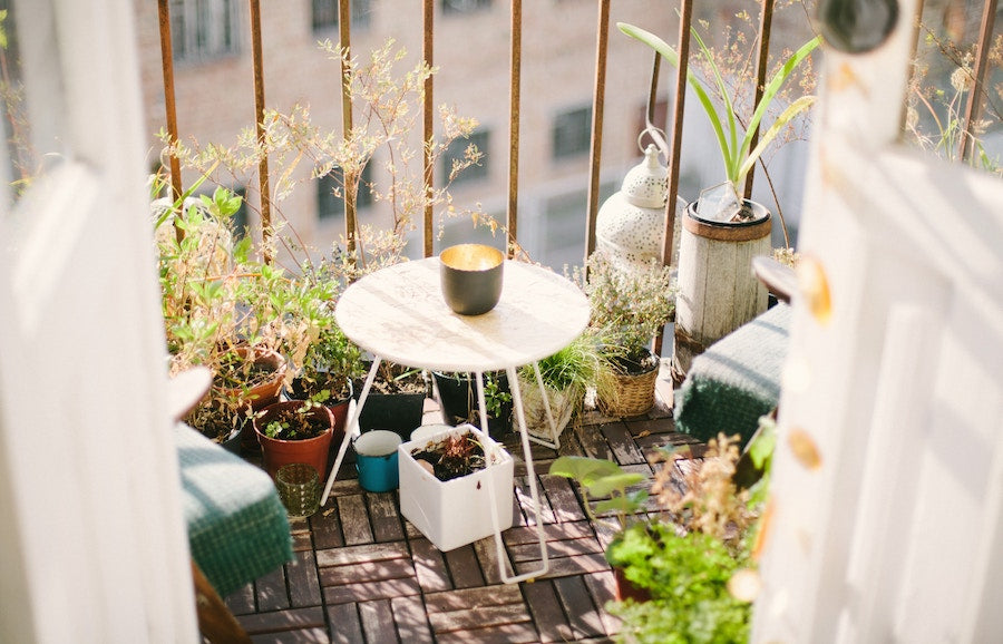 Container garden, growing a garden in a small space, small garden, gardening tips, beginner gardener, balcony garden, how to garden in a small space, how to start a container garden, plant seeds, plant tools, gardening tools, gardening accessories,