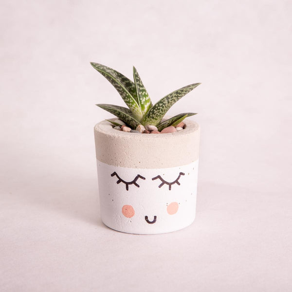 Mini Tub Concrete Planter - Cute Face - Concrete Planter - Throw Some Seeds