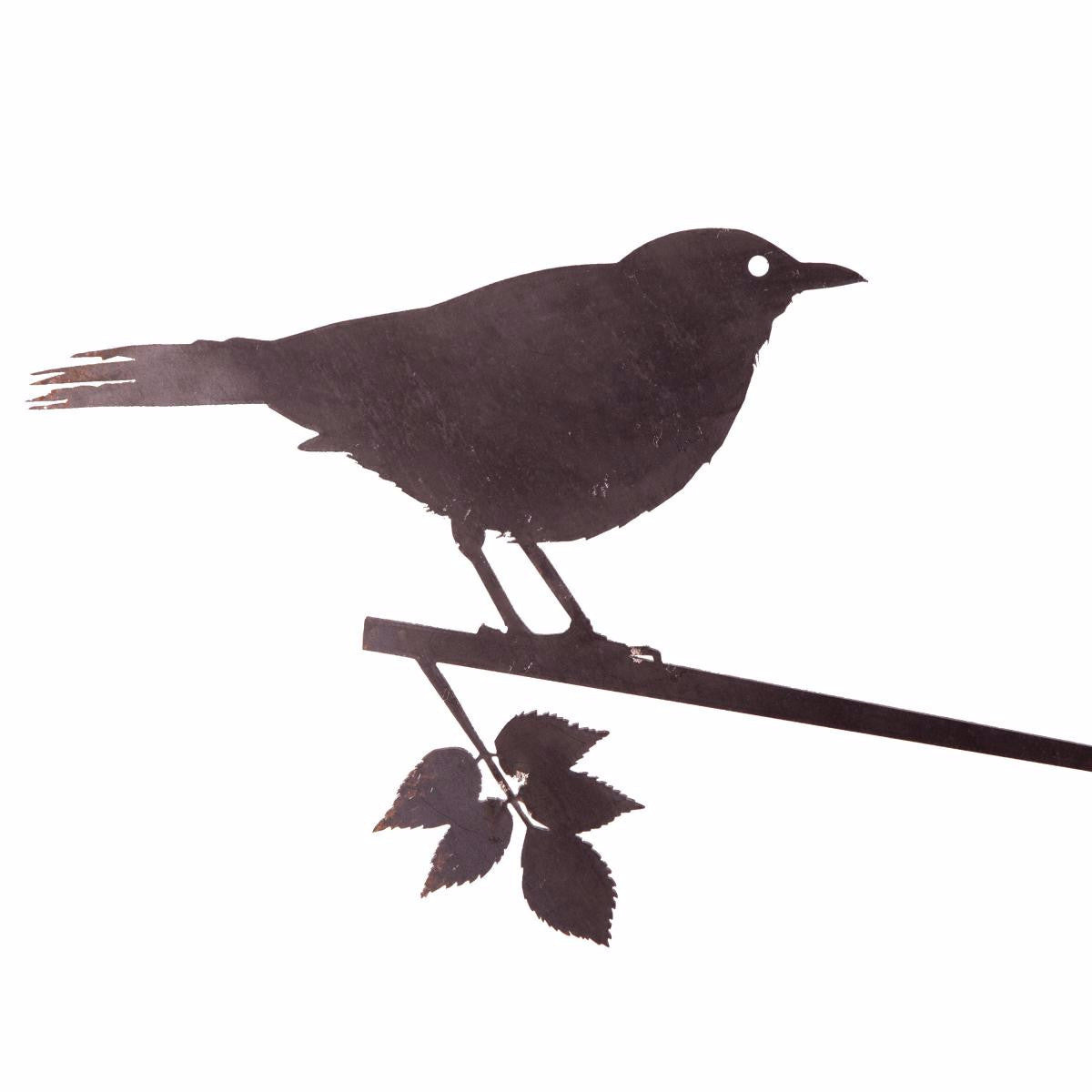 Metalbird - Currawong - Metalbird - Throw Some Seeds - Australian gardening gifts and eco products online!