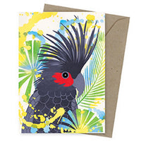 Dreamscapes Card – Palm Cockatoo - Card - Throw Some Seeds - Australian gardening gifts and eco products online!