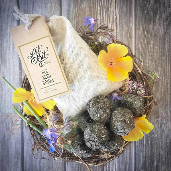 Lil'Bit Bee Seed Bombs - Bag of 6 - Growing Kit - Throw Some Seeds - Australian gardening gifts and eco products online!