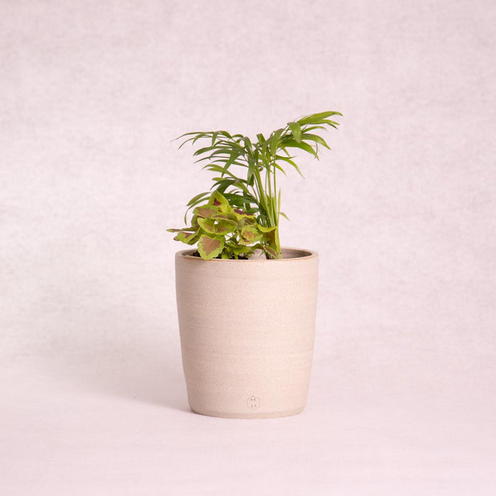 Ceramic Vase - Wide (Natural Clay) - Vase - Throw Some Seeds - Australian gardening gifts and eco products online!