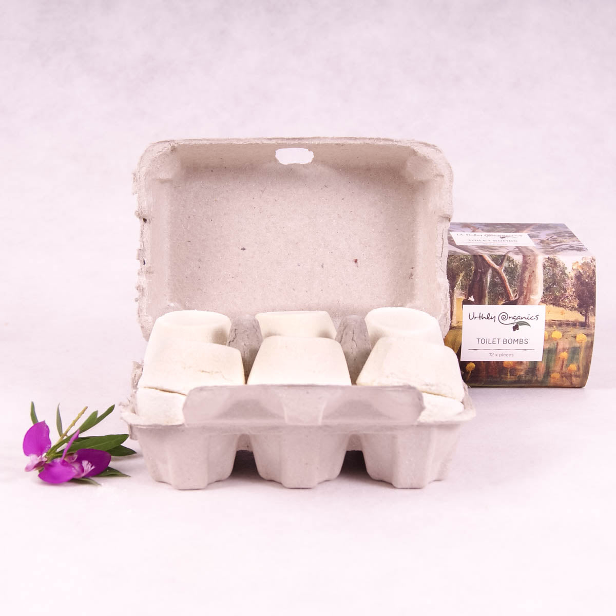 Toilet Bombs Carton of 12 - Urthly Organics - Toilet Cleaner - Throw Some Seeds - Australian gardening gifts and eco products online!