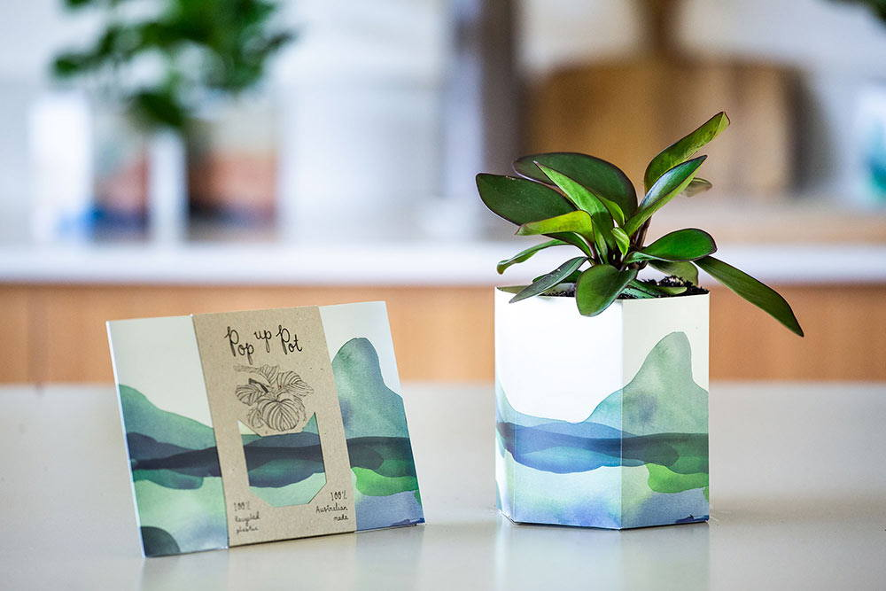 Sow 'n Sow Pop Up Pot - 'Mountain'