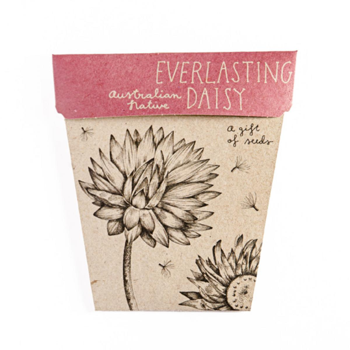 Sow 'n Sow Gift Card with Seeds - Everlasting Daisy - Gift of Seeds - Throw Some Seeds - Australian gardening gifts and eco products online!