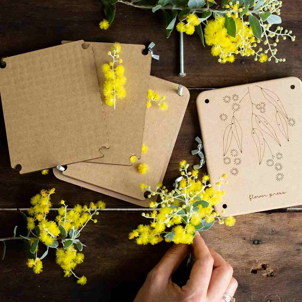 Sow 'n Sow Flower Press - 'Wattle' Mini - Flower Press - Throw Some Seeds - Australian gardening gifts and eco products online!