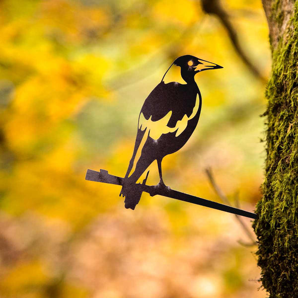 Metalbird - Magpie - Metalbird - Throw Some Seeds - Australian gardening gifts and eco products online!