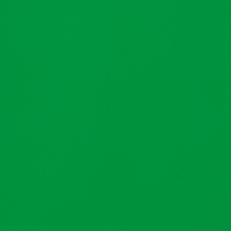 2.7M Green Paper Backdrop LUVO STORE