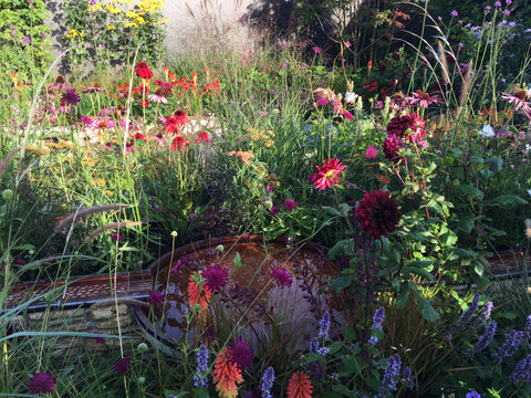 Finding Our Way: An NHS Tribute Garden at RHS Chelsea Flower Show 2021