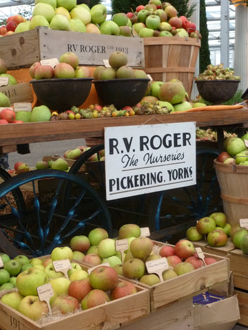 Image of apples in the Grand Pavilion at RHS Chelsea Flower Show 2021