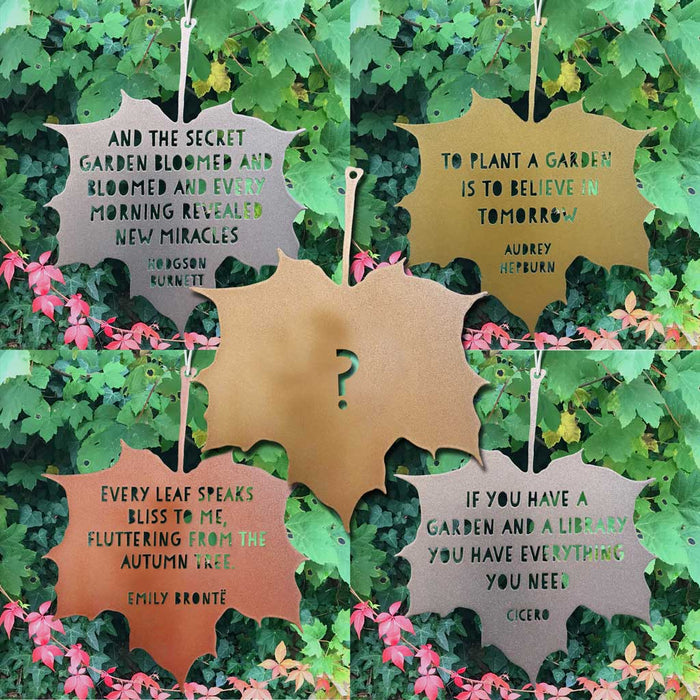 Subscription for Leaf Quotes - Four leaves, Four Seasons - Spring, Summer, Autumn, Winter plus one special gift