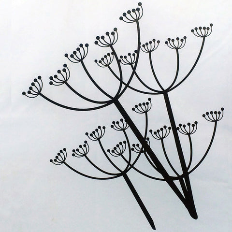 Cow Parsley Wall Art