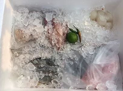 How To Safely Thaw Fishes & Seafood
