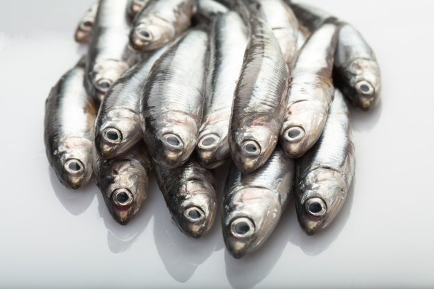 How to Cook Fresh Sardine Fish