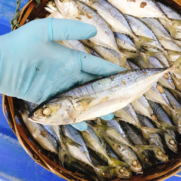 Ikan Rebus  /  Freshly Steamed Salted Fish (M) 500g