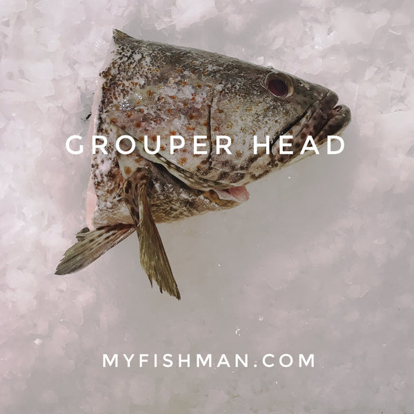 Grouper Fish Head 石班鱼头