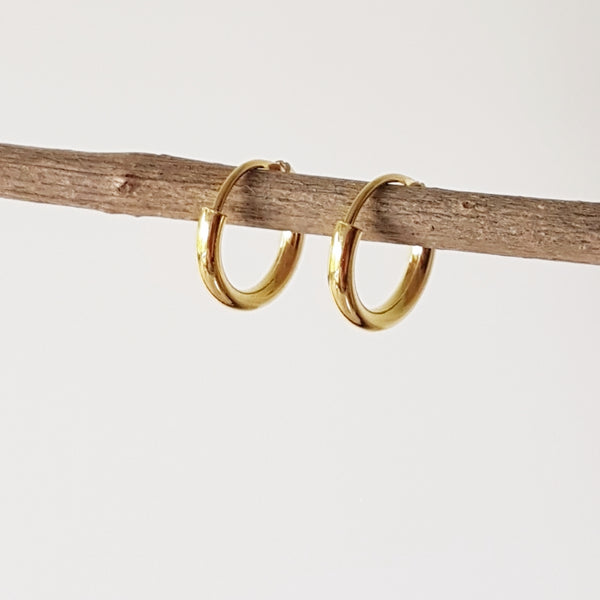 "Gold-plated oorringen ""Hoop"" 2/12"