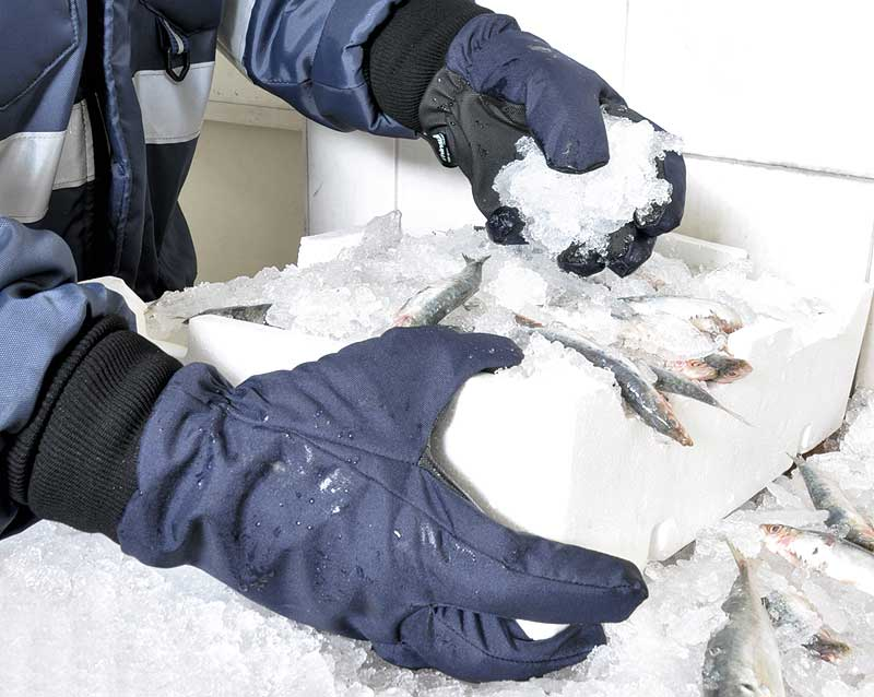 Tundra Cold Protection Gloves PVC
