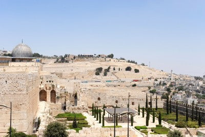 mount of olives jesus