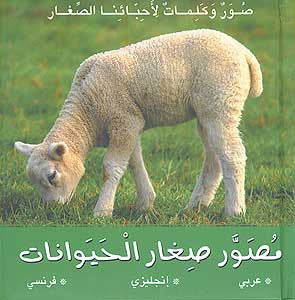My First Word Book-Baby Animals - Children's Dual Language 3-6 Yrs - Arabic Islamic Shopping Store