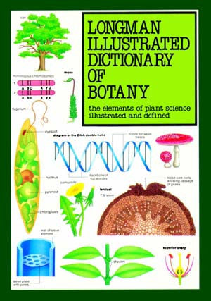 Illustrated Dictionary of Botany English-Arabic - Botany - English-Arabic Dictionary - Special Interest - Arabic Islamic Shopping Store