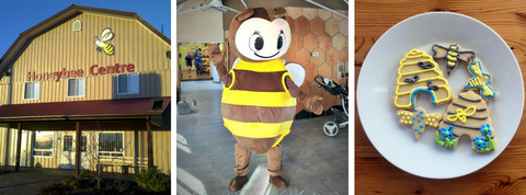 Honeybee Centre kids birthday party