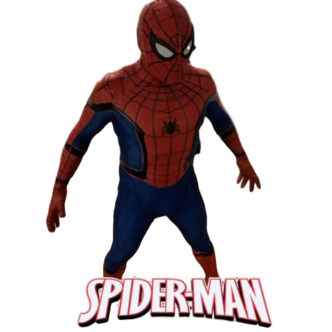 Superhero birthday party with Spider- Man by video chat