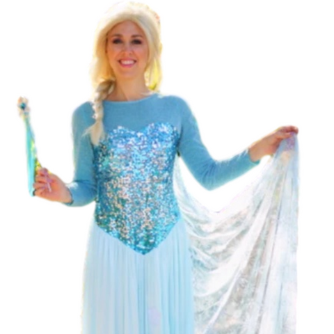 Princess birthday party with Elsa by video chat