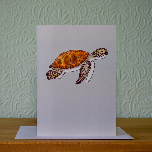 Greetings card - 'Turtle'