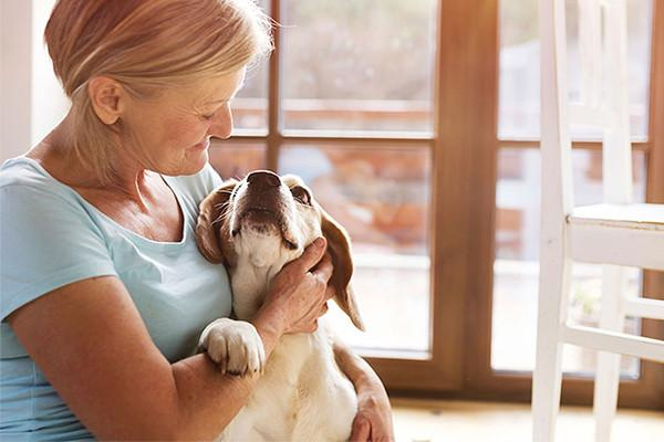 10 Toxins to Keep Away From Your Pets
