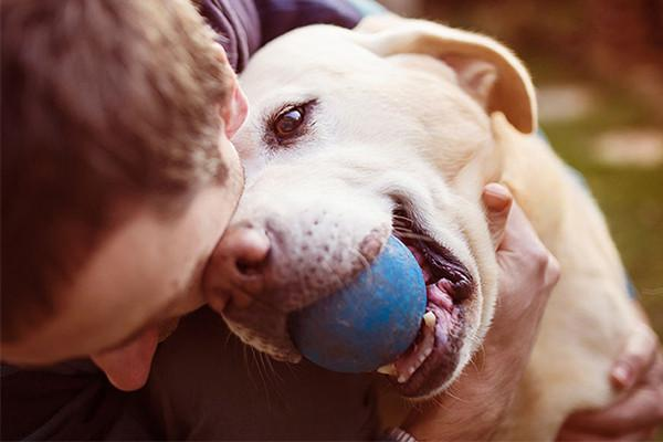 Five Activities That Doggies Love