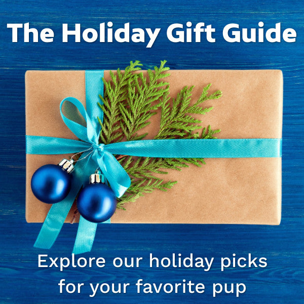 2020 Holiday Gift Guide for Your Pup