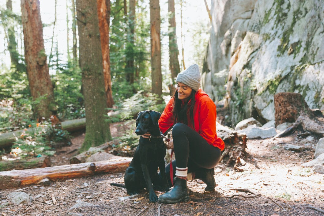 How To Keep Your Dog Healthy And Comfortable While In The Great Outdoors