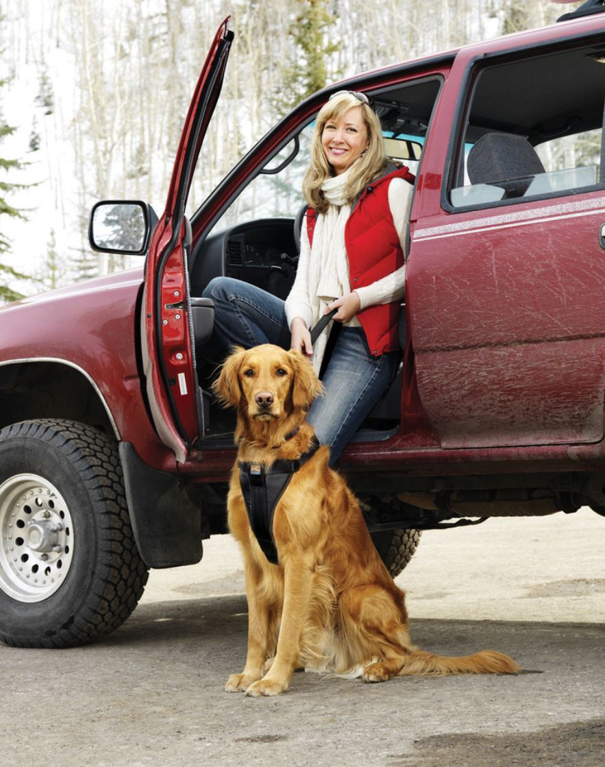 TRAVELLING WITH PETS: HOW TO REACH YOUR DESTINATION SAFELY EVERY TIME