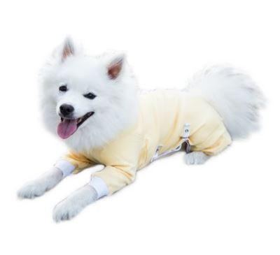 Tips for Selecting a Post Surgery Dog Garment