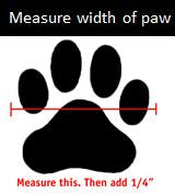 dog-boot-measurement-tip