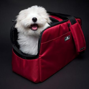 Sleepypod Atom In Cabin Dog and Cat Carrier