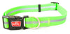 Wigzi Waterproof Reflective Dog Collar