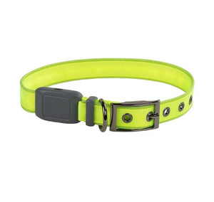 Nite Ize NiteDog RechargeableLED Dog Collar