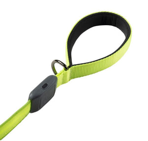 Nite Ize NiteDog Rechargeable LED Dog Leash