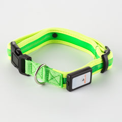 Nite Beams LED USB Rechargeable Dog Collar