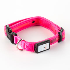 Nitebeam LED Rechargeable Dog Collar - Keep Doggie Safe