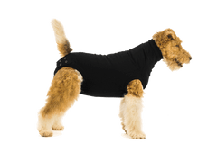 Suitical Dog Recovery Suit