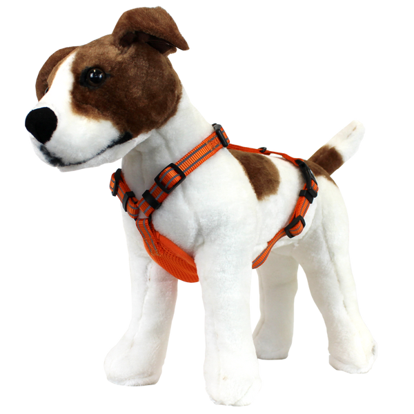 Essential Visibility Adventure Harness [Neon Orange] - alcott  - 1