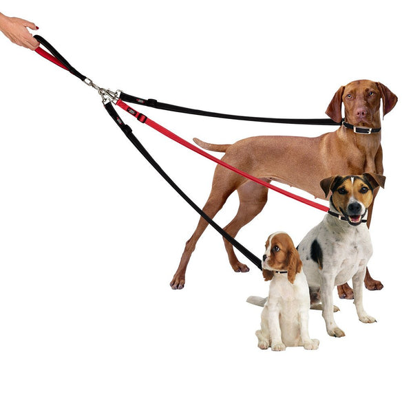 Three Dog Tangle Free Triple Leash Keepdoggiesafe Com