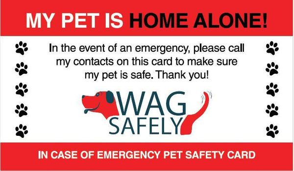 Pet Home Alone Emergency Wallet Cards ( Set of 6) - Keep Doggie Safe